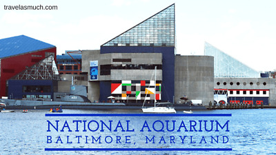 National Aquarium Baltimore Ticket / 4 Passes