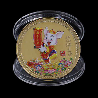 Year of the Pig Souvenir Coin Chinese Zodiac Collection Coin Lucky Character Yw