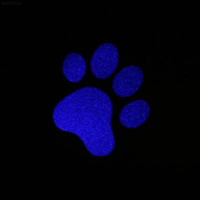 0716 Cat Kitten Pet Toy LED Laser Pointer Pen Light With Bright Mouse Animation