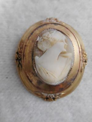 """Victorian Revival carved shell cameo & gold plated frame 1 15/16"""" pin"""