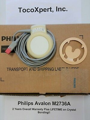 Philips M2736A Avalon Ultrasound Transducer - 2 YR + LIFETIME Crystal Warranty!