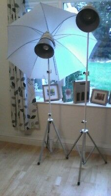 Pair of Photax 21cms. Studio lights with stands, brolly and flash-sync.