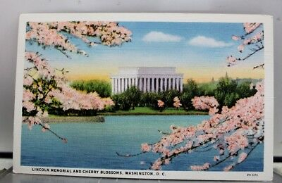 Washington DC Lincoln Memorial Cherry Blossoms Postcard Old Vintage Card View PC