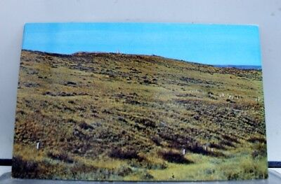Montana MT Company F and I Positions Custer Battlefield Postcard Old Vintage PC