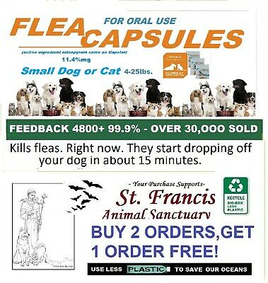 9 Capsules Flea Treatment Remedy Kill for cats oral starts work in 1/2 hour