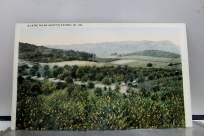 West Virginia WV Martinsburg Postcard Old Vintage Card View Standard Souvenir PC