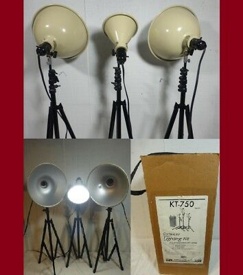 EX ~ Smith-Victor Complete 750 Total Watt Lighting Kit ~ Photo, Utility, Home