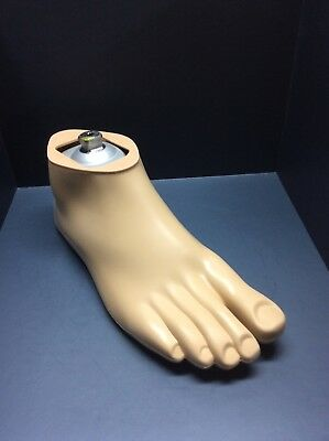 Otto Bock Dynamic Motion Prosthetic Foot Size 26R