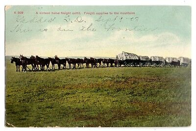 """Geddes South Dakota 1908 """"sixteen Horse Freight Outfit""""--Supplies To The Mts.~~"""