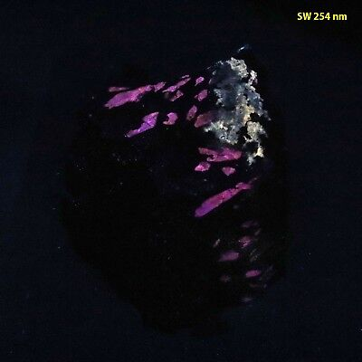 bb: Pink & Blue-Fluorescent Apatite Crystals in Magnetite from Utah