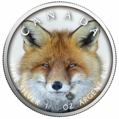 RED FOX - CANADA'S WILDLIFE - MAPLE LEAF - 2019 1 oz Pure Silver Color Coin