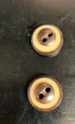 """Cute Pair Vintage Vegetable Ivory Cream + Brown 2 Hole Buttons 1/2"""""""