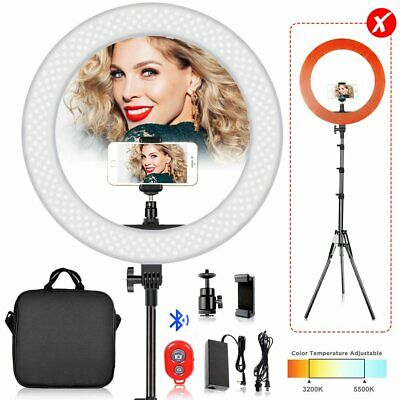 240pcs LED Ring Light Dimmable 6500K Lighting Video Continuous Light Stand Kit