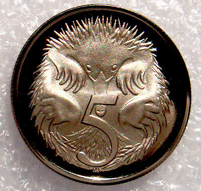 Australia:1999  5 Cents Proof Echidna /spiney Ant Eater!