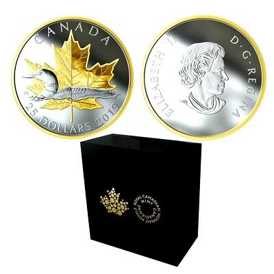 2019 Pure Silver Gold Plated Piedfort 1 Oz .9999 - Timeless Icons: Loon