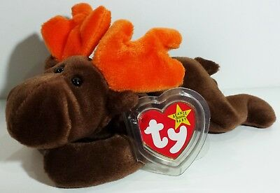 """TY Beanie Babies """"CHOCOLATE"""" the Moose ~ MINT w/ CT - RETIRED! Please Read"""