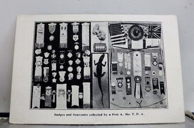 Art Badges And Souvenirs Collected Postcard Old Vintage Card View Standard Post