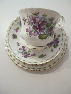 ROYAL ALBERT Flower Of The Month Tea Cup & Saucer. Violets Design for February