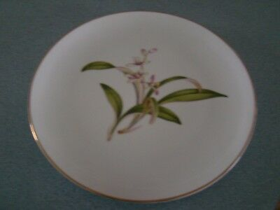 Wentworth Lillian Coupe Dinner  Plate Free U.s. Shipping!