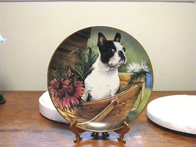 "DANBURY MINT BOSTON TERRIER PLATE ""BASKET BUDDIES"" By Dan Hatala"