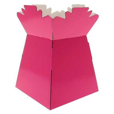 Hot Pink - Living Vases Florist Bouquet Box Flower Plant Aqua Sweet Gift Boxes