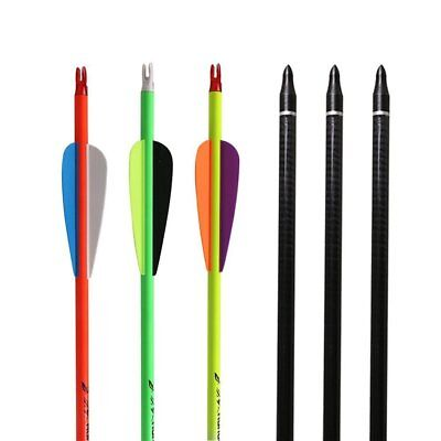 Archery Carbon Arrows 31'' Rainbow Color Hunting Arrows Spine 350 Screw-In Tips