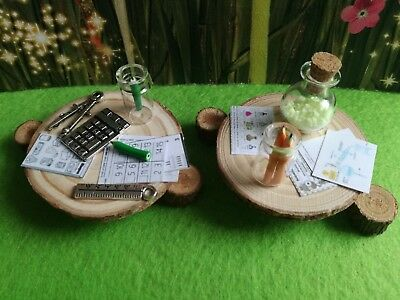Miniature school accessories,science & maths,real glow potion, sylvanian family?