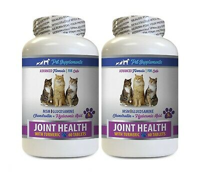 cat hip pain - CAT TURMERIC FOR JOINT HEALTH 2B - cat joint supplements