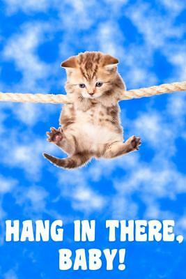 Hang In There Baby! Kitten Retro Motivational Mural Poster 36x54 inch