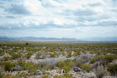 PRIME 20 Acres off of HWY 67 - Presidio County TX Texas - Easy Access from Town
