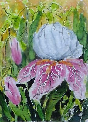 ACEO IRIS flower card original watercolor painting mini picture by Europe artist