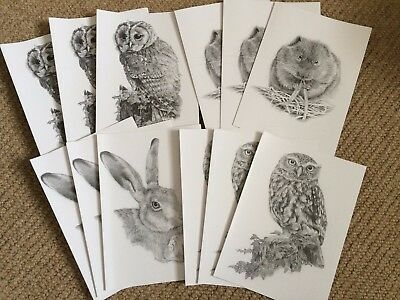 12 blank A5 hand drawn Wildlife greetings cards w/envs Owls, Hare & Watervole
