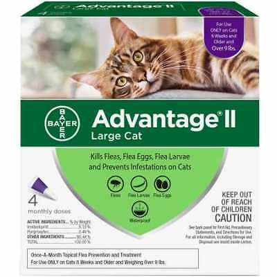 4 MONTH Advantage II Flea Control Large Cat (for cats over 9 lbs ) PURPLE