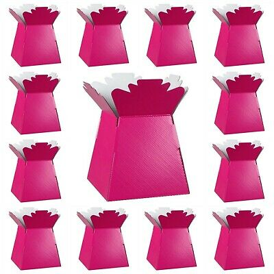FUCHSIA PINK Living Vases Florist Bouquet Box Flower Plant Aqua Sweet Boxes UK