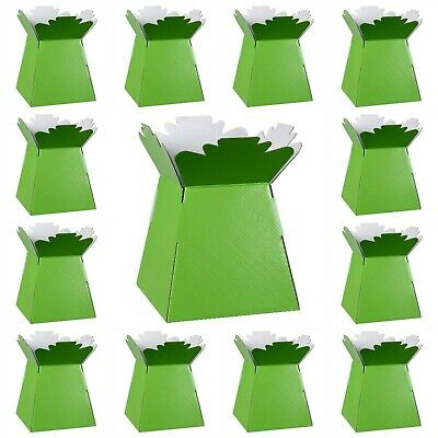 LIME GREEN Living Vases Florist Bouquet Box Flower Plant Aqua Sweet Boxes UK