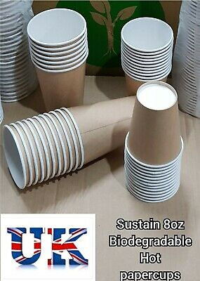Paper Cup 8oz/1000 Tea/Coffee Disposable celebrations & occasions Party supplies