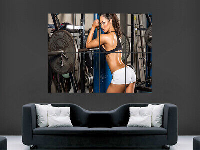 Sexy Gym Girl Weightlifting Fitness Workout Muscle Weights  Mage Wall Art