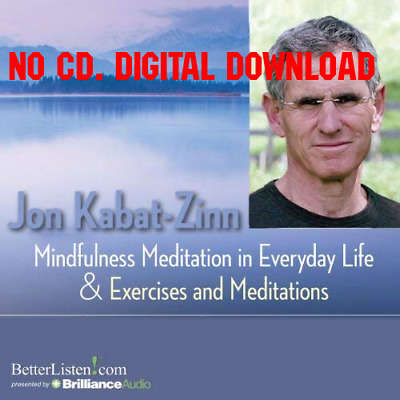 Mindfulness Meditations in Everyday Life and Exercises and Meditatio [AUDIO]