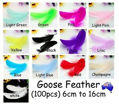 Goose Feathers (x100) 6-16cm DIY Craft Wedding Decoration Event Party Feather