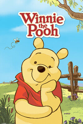 Winnie The Pooh Disney Cartoon Character Adorable Childrens Poster 24x36 Inch