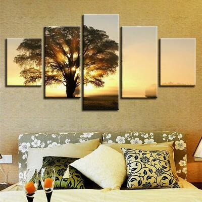 SUNRISE BEHIND TREE Canvas Art Print for Wall Decor and Painting of Scenic View