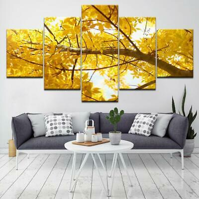 THE YELLOW GINGKGO TREE Canvas Art Print for Wall Decor and Painting of Scenic V