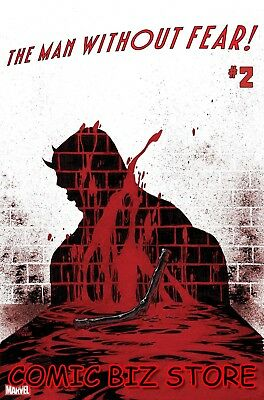 Man Without Fear #2 (Of 5) (2019) 1St Printing Kyle Hotz Main Cover Marvel