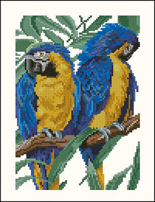 Blue Parrots Cross Stitch Chart Digital Format