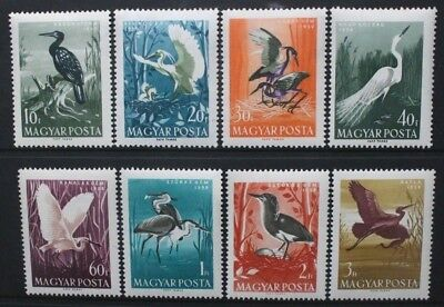 HUNGARY 1959 Water Birds: Herons Cormorants Egret. Set of 8. MNH. SG1574/1581.