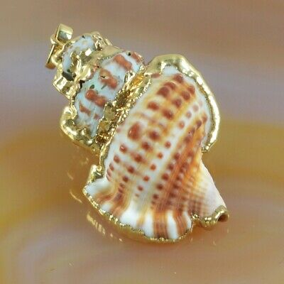 Beach Natural Conch Sea Shell Pendant Bead With Gold Plated Cap B077958