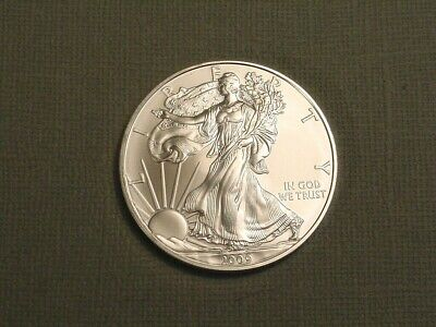 2009 American Eagle 1 Ounce .999 Silver One Dollar~US Mint Coin~Ungraded Bullion