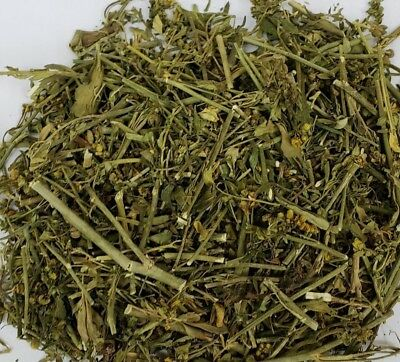 Rue /Ruda Herb- Protect against Hexes-Curses-Jinxes-Use in Healing- & Exorcism