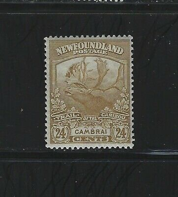 NEWFOUNDLAND - #125 - 24c TRAIL OF THE CARIBOU MINT STAMP (1919) MLH CAMBRAI