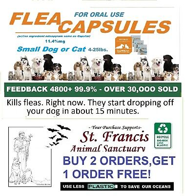 12 SM Equal To Capaction FleaCaps Capsules Flea Treatment OTC 2 FREE OFFER!